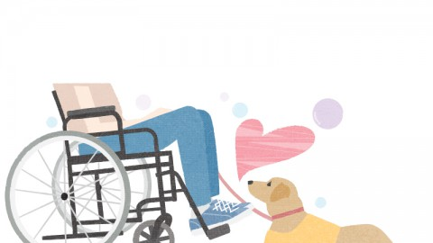 International Day Of Persons With Disabilities (Wed)