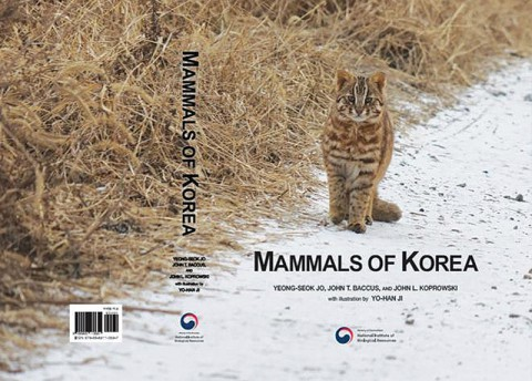 Mammals Of Korea (Wed)