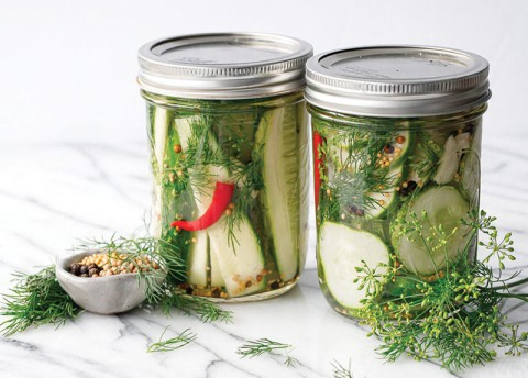 Pickle Day (Wed)