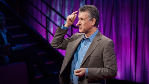 How to Stay Calm When You Know You'll Be Stressed | Daniel Levitin | TED Talks
