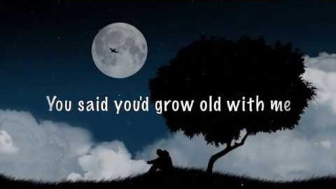 Michael Schulte – You Said You'd Grow Old With Me (Lyrics)